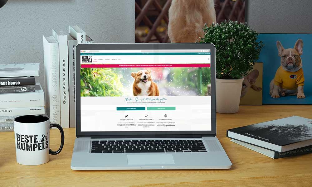 hundefutter homepage webdesign-bochum_gladbeck werbeagentur